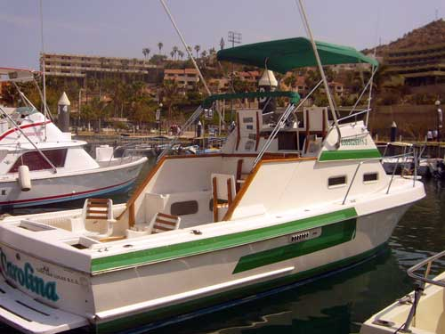 Cabo san lucas fishing charter boats best charter for Cabo san lucas fishing charters prices