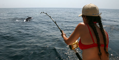Woman catching marlin on stand-up gear in Cabo San Lucas